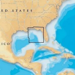 Navionics Platinum East Gulf Of Mexico MicrosdSd-small image